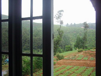 Sri Lanka, Nuwara Eliya, Ingle Wood Lodge