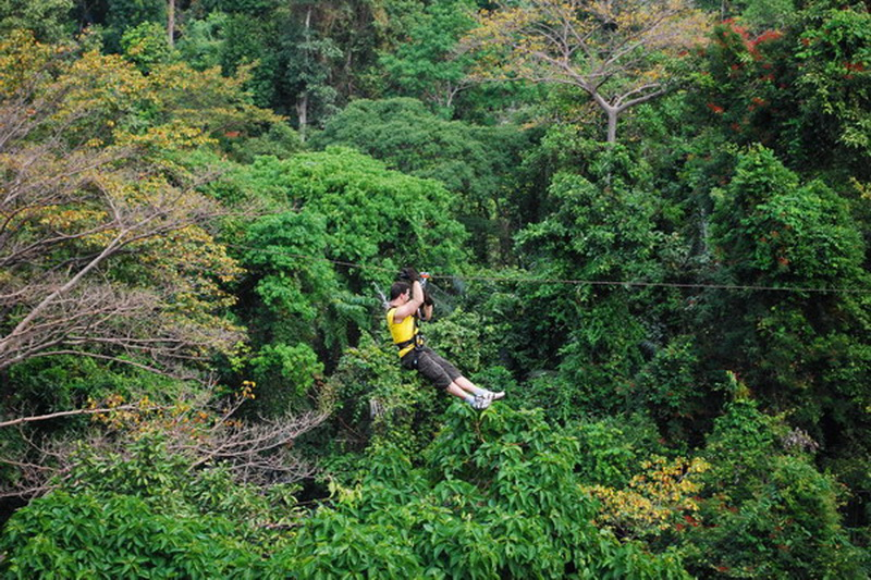 Thailand, Pattaya, Flight of the Gibbon